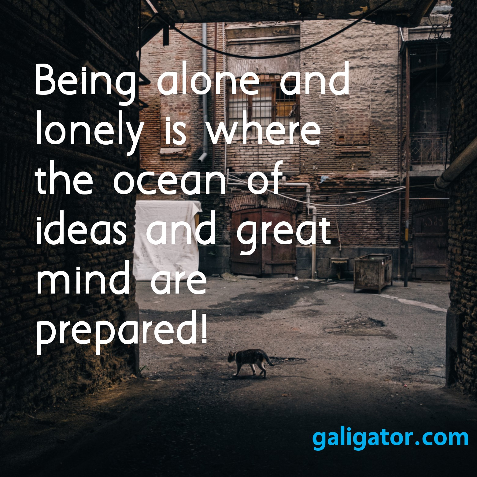 walk alone quotes,  leave me alone quotes , fight alone quotes, you are not alone quotes, leave alone quotes, alone quotes, feeling alone quotes , happy being alone quotes